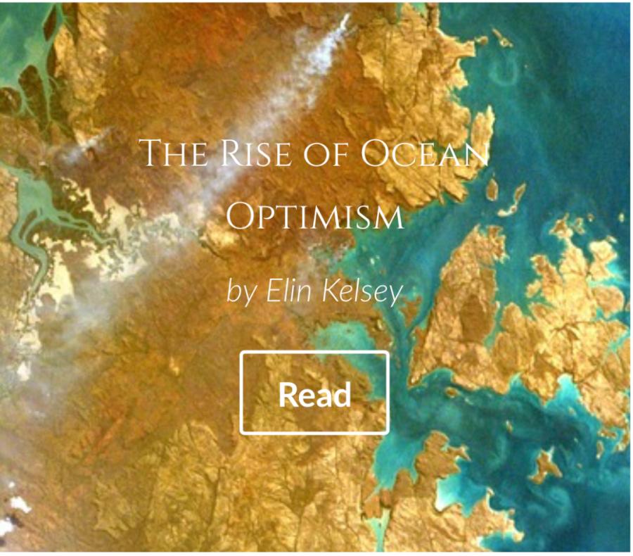 Ocean Optimism